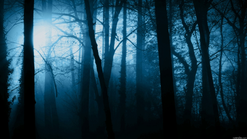 The_Dark_Forest