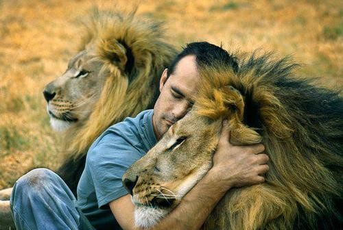 Man Hugs Lion and It's Pretty Much What We Wish We Were all Doing